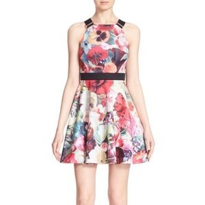 Ted Baker Designer Dress